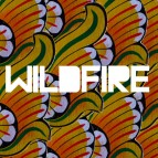 "SBTRKT ft Yukimi Nagano ""Wildfire"" Video"