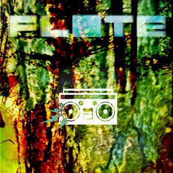 """Future Classic: Flote """"Disenchanted Forest"""""""
