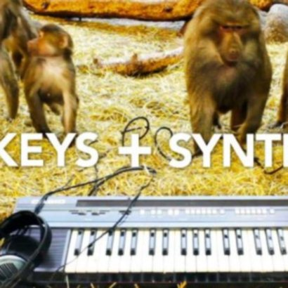 Monkeys VS Synths