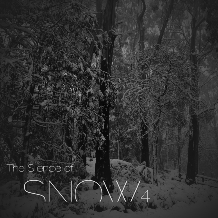 the silence of snow 4